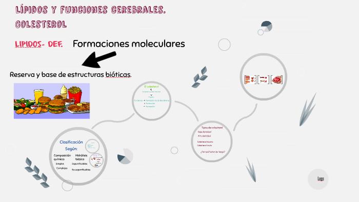 Lípidos Y Funciones Cerebrales Colesterol By Sofia Diaz On