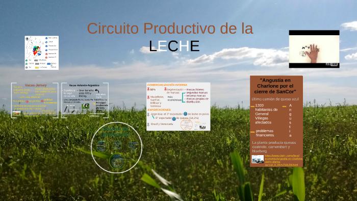 Circuito Productivo De La Leche : Salida educativa circuito productivo de la leche visita de