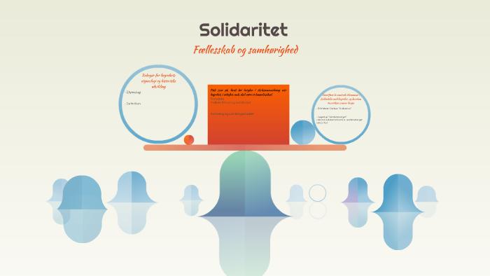 hvad betyder solidaritet