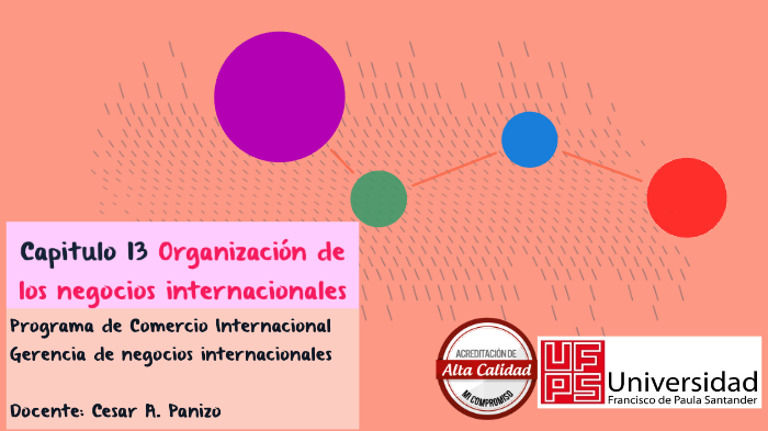 Capitulo 13 Organización De Los Negocios Internacionales By