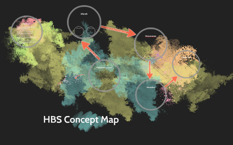 Hormone Concept Map.Hbs Concept Map By Bri Hartley On Prezi