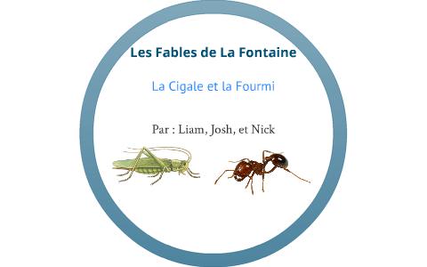 Fable La Cigale Et La Fourmi Texte - Texte Préféré