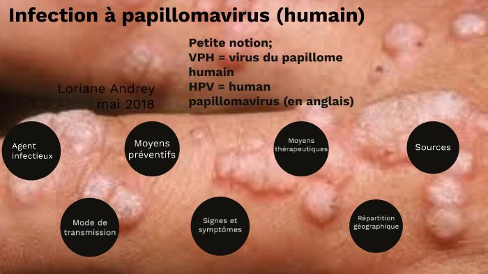 Definition le papillomavirus humain