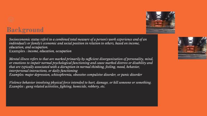 socioeconomic status examples