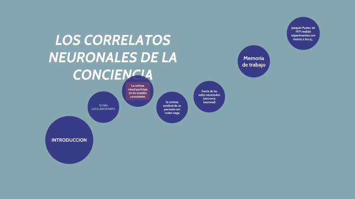 Resultado de imagen de LOs correlatos neuronales de la conciencia