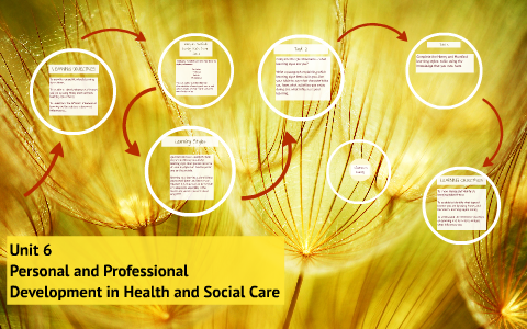 unit 6 health and social care p1