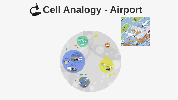 Cell Analogy Airport By Mimi Zhao On Prezi