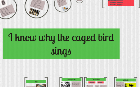 i know why the caged bird sings conflict