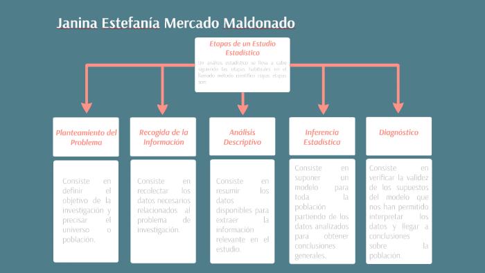 Etapas De Un Estudio Estadístico By Janina Mercado