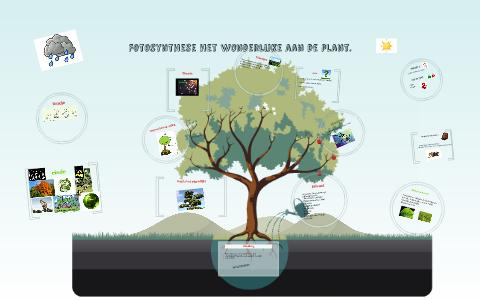 Wonderbaarlijk Deze spreekbeurt gaat over fotosynthese. by lars kruisinga on Prezi PJ-28
