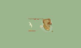 Les sols menacés par les activités humaines   Mtaterre