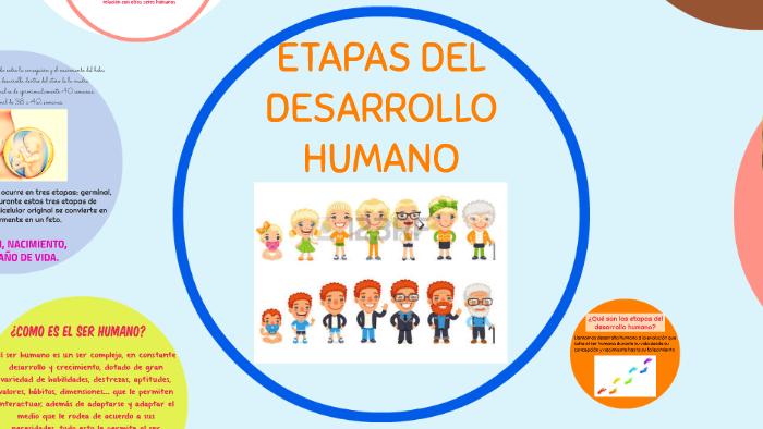 358b29db5 etapa de desarrollo humano by yuriko franchesca gardini guerra on Prezi