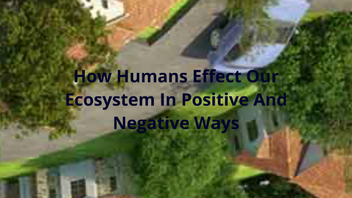 How Humans Effect Our Ecosystem In Positive And Negative Way