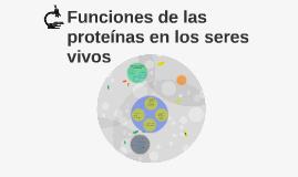 Funciones De Las Proteinas En Los Seres Vivos By Jose Marmol