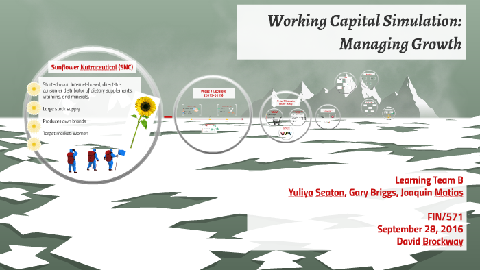 working capital simulation managing growth assignment & presentation