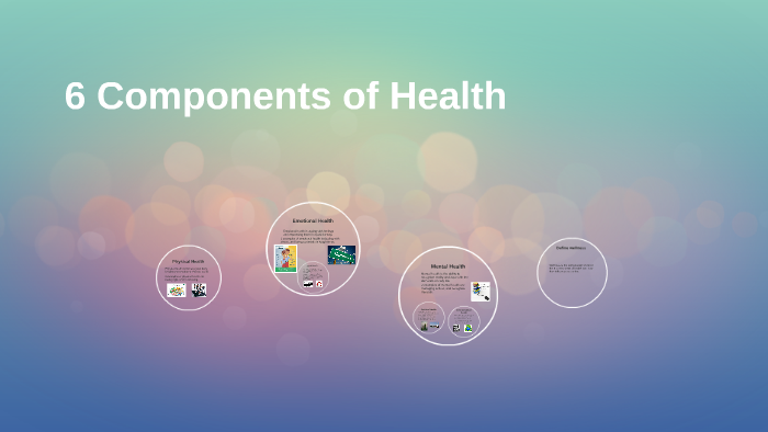 what are the 6 components of health