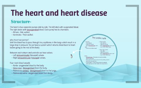 The heart and heart disease by Emma Docherty on Prezi