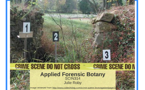What Is Forensic Botany By Julie Roby On Prezi Next