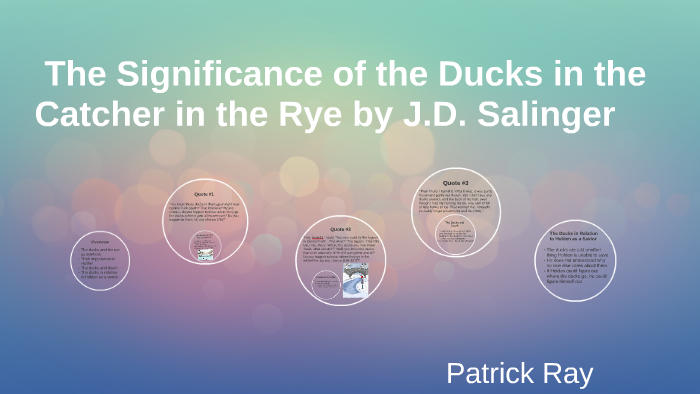 The Significance Of The Ducks In The Catcher In The Rye By J By