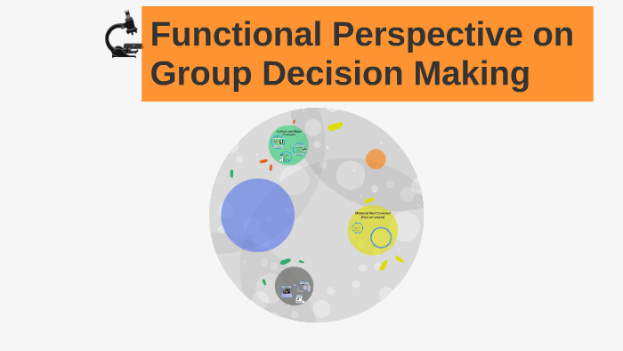 functional perspective on group decision making