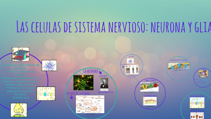 neurona therapeutics glassdoor