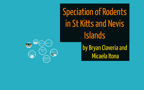 st kitts and nevis rodents