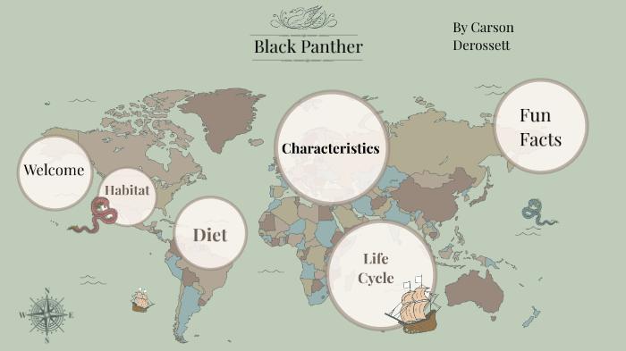 Carson Black Panther By Carson Derossett On Prezi Next