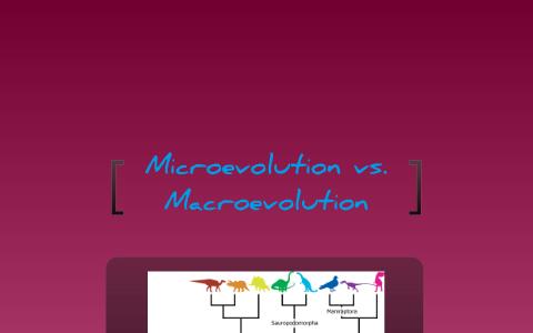 Microevolution vs  Macroevolution by Caitlin McKenzie on Prezi