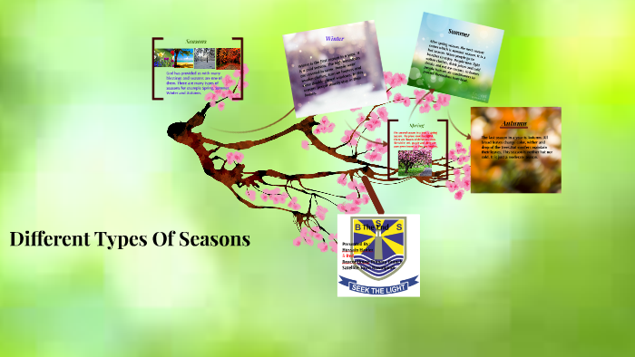 Different Types Of Seasons by Hussain Haider on Prezi