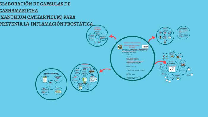 prostata patologia slideshare
