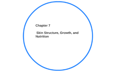 chapter 7 skin structure and growth