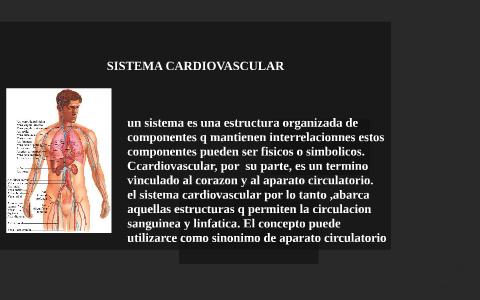 Sistemas Del Cuerpo Humano By Astor Sanchez On Prezi