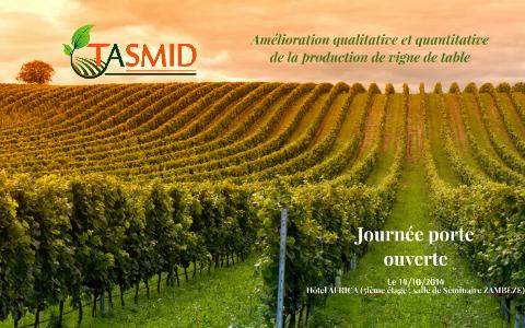 Amelioration Qualitative Et Quantitative De La Grappe De La By