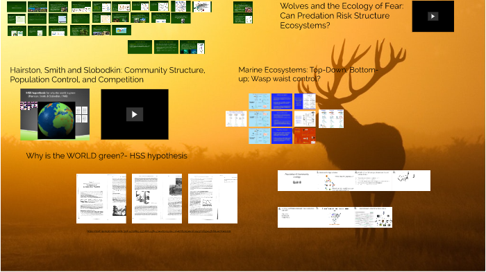 Community Structure And Control By Randall Colvin On Prezi Next