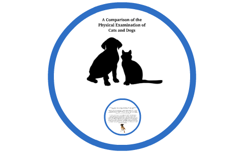 similarities and differences between cats and dogs