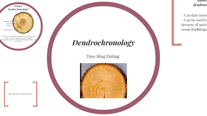 Dendrochronology By Brooke Drover On Prezi