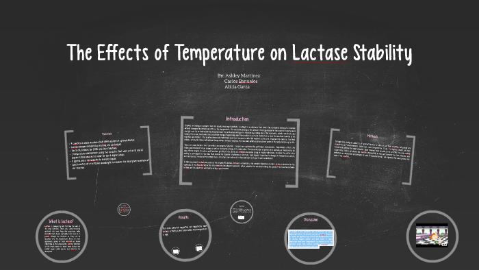 lactase v2