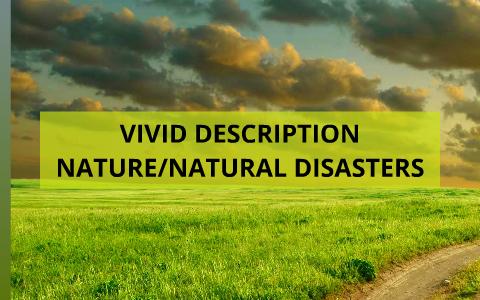 what is a vivid description