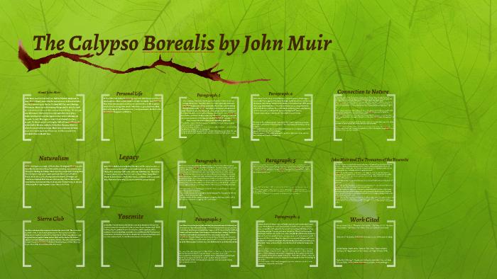 calypso borealis an essay by john muir