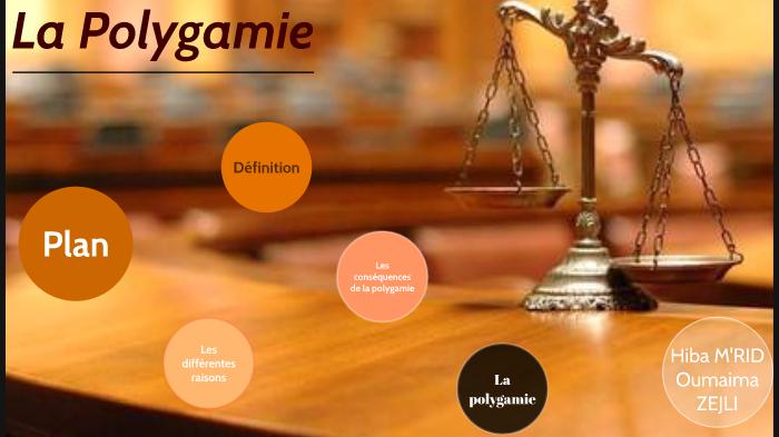 Polygamie definition