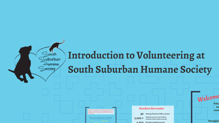 Introduction to Volunteering at South Suburban Humane Societ