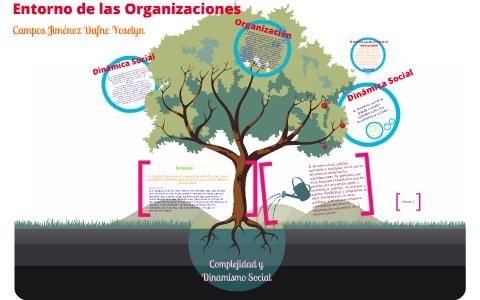 Complejidad Y Dinamismo Social By Dafne Campos On Prezi