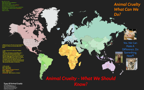 Animal Cruelty - How Can We Help by jak robinson on Prezi