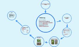 Evolutionsfaktor Isolation Alloptarische Artenbildung By David Bechdolt