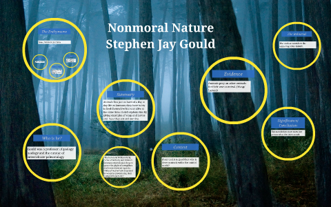 stephen jay gould nonmoral nature