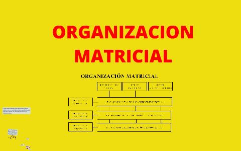 Organizacion Matricial By Andres Cerquera On Prezi