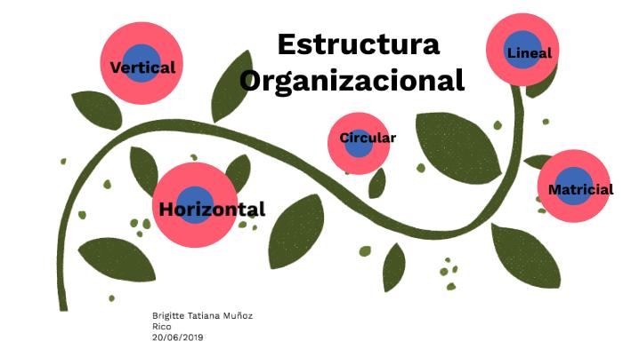 Estructura Organizacional By Tatiana Muñoz On Prezi Next