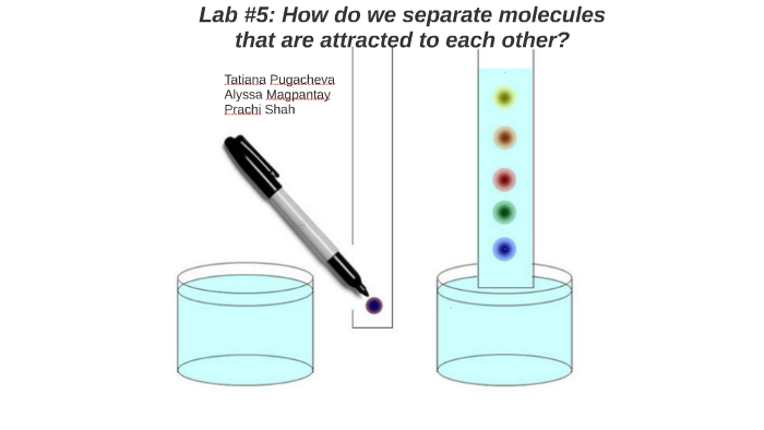 paper chromatography lab report results