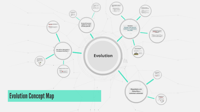 Concept Map About Evolution.Evolution Concept Map By Cindy Chang On Prezi