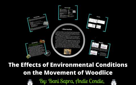 woodlice temperature experiment